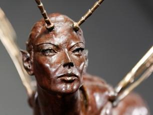 Métamorphose III – Ichneumon visage