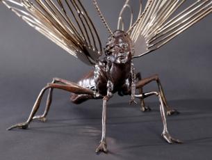 Métamorphose IV – Papillon – vue 3