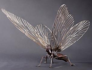 Métamorphose IV – Papillon – vue 1