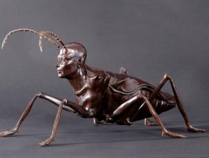 Métamorphose II – Coléoptère – vue de côté