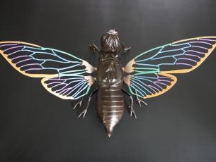 Métamorphose V – Cigale vue de dessus