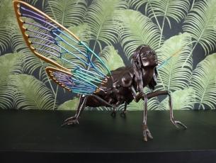 Métamorphose V – Cigale