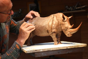 Rhinocéros en cire